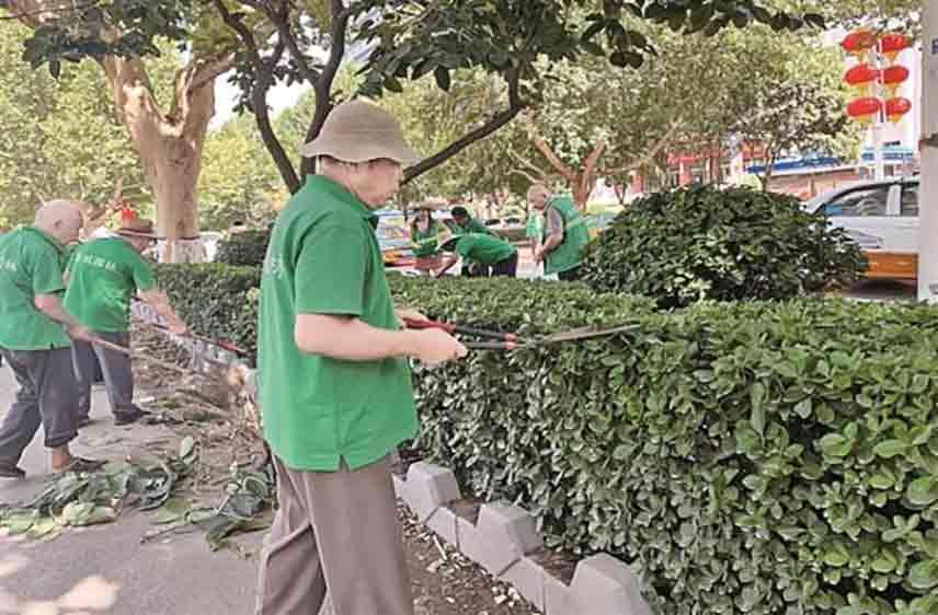 运城:构建绿色生态体系 推进绿化高质量发展