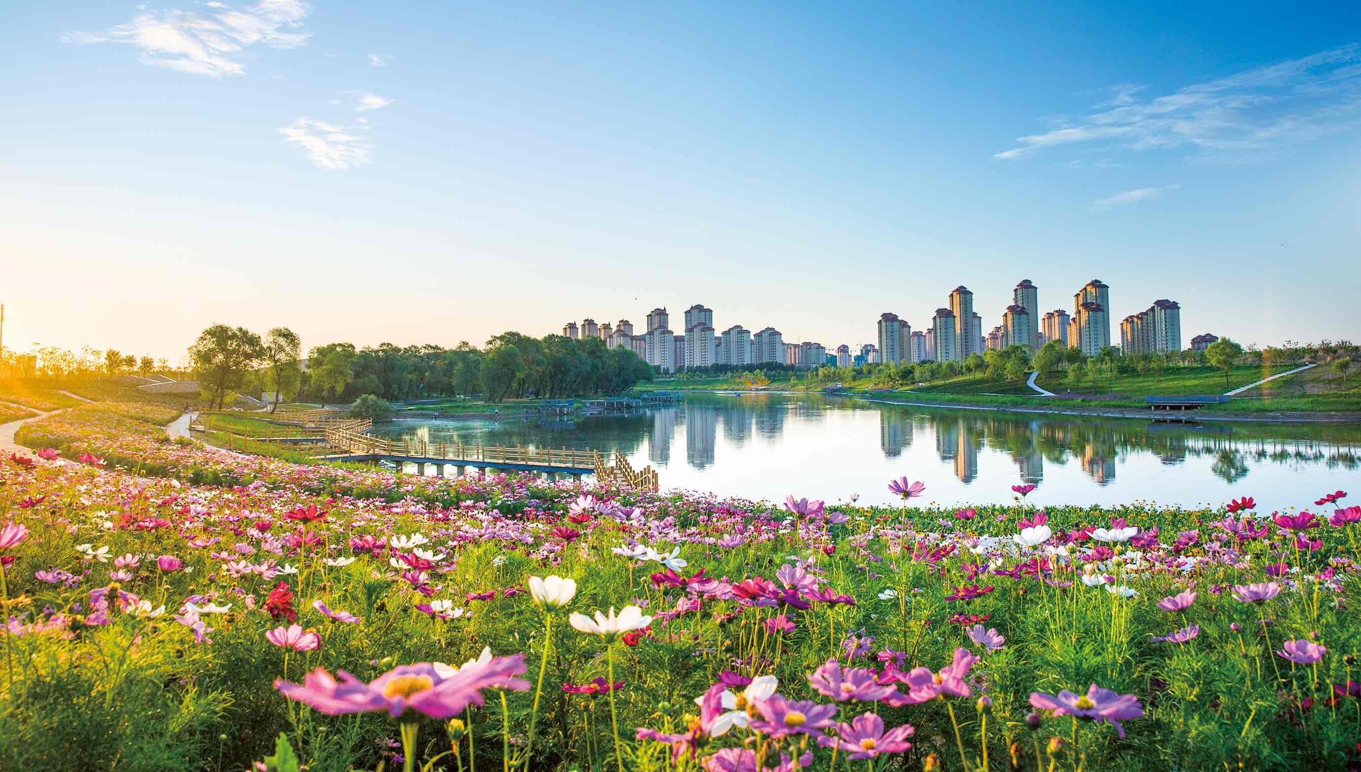天津:奋发有为新时代 铸就住房和城乡建设新辉煌