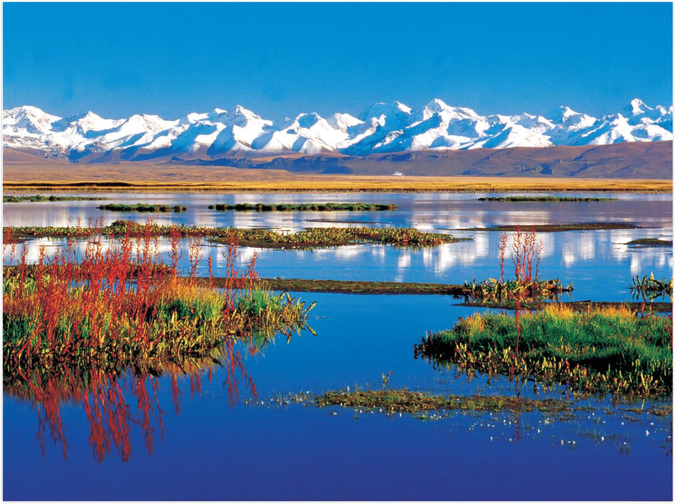 新疆:边疆兴建设  辉煌耀天山