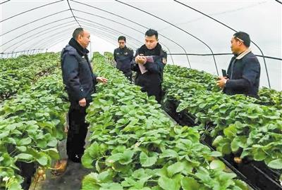 遵义市开展春节期间农产品质量安全专项执法行动