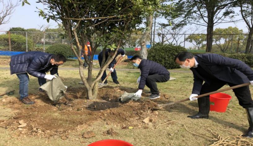 宁波城管系统开展义务植物活动