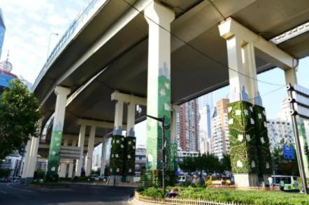 上海建成立体绿化面积逾430万平方米
