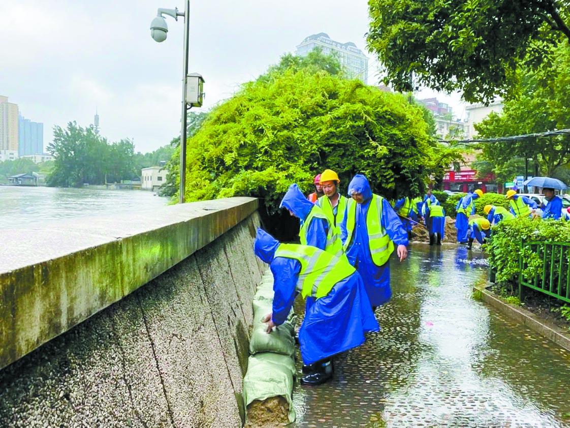 暴雨中的守护者