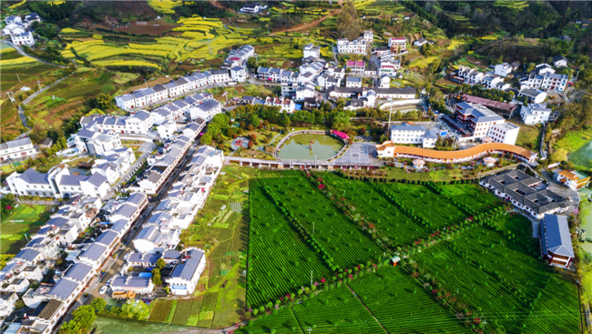 陕西:进一步做好农村住房建设管理工作